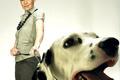 dog behaviour DR Dogs Behavior Solutions