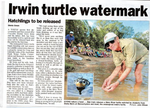 turtlerelease rev e1284463342169 Irwins Turtle
