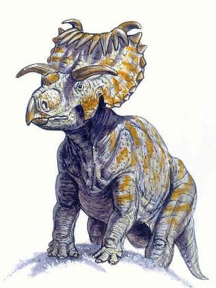 kosmoceratops Kosmoceratops