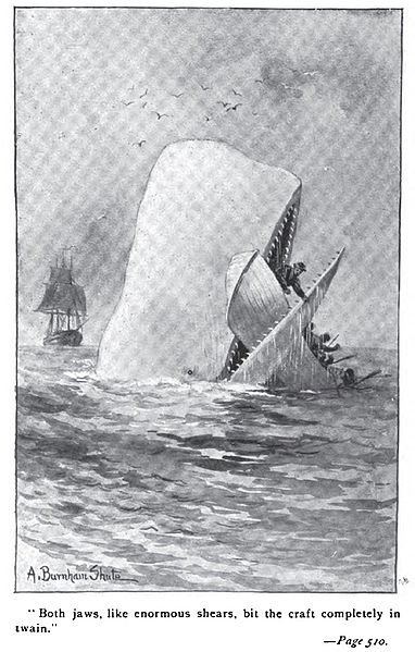 382px Moby Dick p510 illustration Moby Dicks ship found