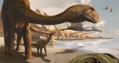 ANIMALS ANGOLA 8 e1300766052326 Watch out T Rex: the Angolatitan Giant is bigger than you!