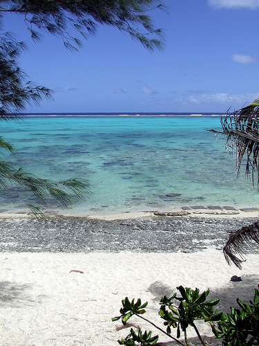 Rarotonga Top 10 Locations Any Diver Needs To Visit