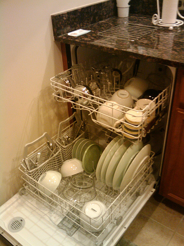 dishwasher World Water Day: 10 Amazing Reasons Why Each Drop Is Precious