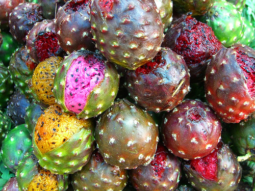 dragonfruit 10 of the Most Exotic Tropical Fruits on Earth